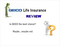 Geico Life Insurance Quote Enchanting Download Geico Life Insurance Quotes Ryancowan Quotes