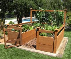 Small Picture Raised Bed Organic Vegetable Garden Seedlings Gardening