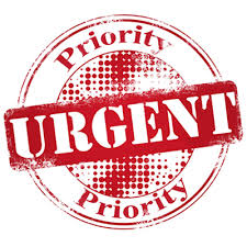 Image result for urgent icon gif