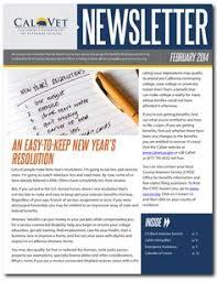 Newsletter Mastheads 12 Best Newsletters Mastheads Images Newsletter Design