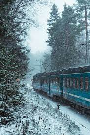 Snow Train Pictures