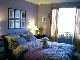 college living room decorating ideas. Fine Decorating Guys Room Decor College Bedroom Ideas For  To College Living Room Decorating Ideas R