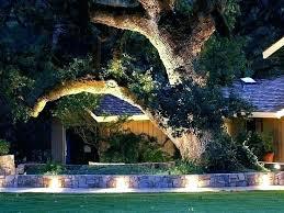 lighting in garden. Solar Rock Lights For Garden Electric String Outdoor Lighting Ideas In