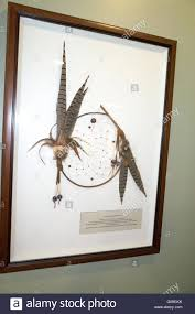 Are Dream Catchers Good Or Bad Ojibwe Indian dream catcher for catching bad dreams and allowing 62