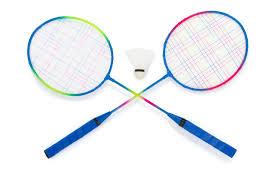 Myndaniðurstaða fyrir badminton