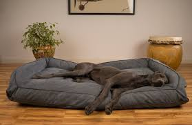 Image of Dog Beds for Great Danes as Pets