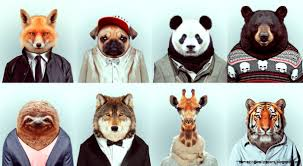 zoo animals in clothes. Wonderful Animals View Original Size In Zoo Animals Clothes