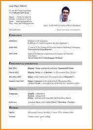 Gallery Of Curriculum Vitae Sample Doc