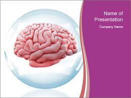 3D Model Of Human Brain Powerpoint Template & Backgrounds Id ...