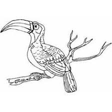 Small Picture coloring sheet bird in nest coloring pages of baby birds in nest