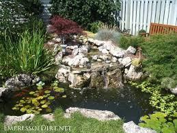Small Picture Garden Ponds Ideas Gardening flowers 101 Gardening flowers 101