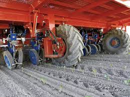 The ferrari futura twin is a fully automated transplanter that can work with vegetables the futura twin automatic transplanter is equipped with a shuttle device to feed two rows of plants. Futura Twin Automated Transplanter Ferraricostruzioni Com
