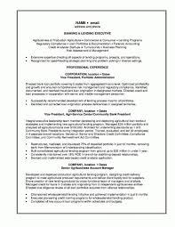 Bank Resume Resume Cv Cover Letter
