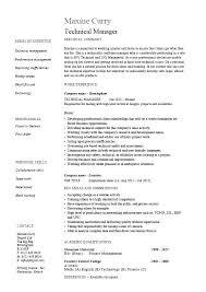 Program Manager Resume Noxdefense Com