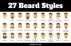 Mustache Styles Chart 27 Most Popular Types Of Beards