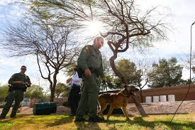 Suspect acted erratically before killing police dog, 2 people, police  report says | Las Vegas Review-Journal