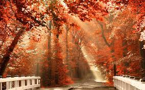 Autumn Nature Desktop Wallpapers - Top ...