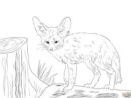 Small Picture Coloring Pages Animals Arctic Fox Coloring Page Fox Coloring