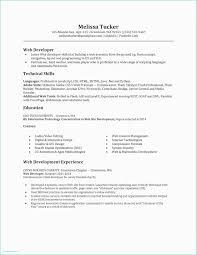 Demo Cv Format Resume In Html Format Property Developer Resume Sample Best Demo Cv