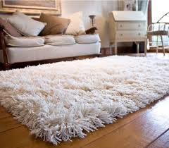 shag rugs.  Shag Superior Complexion With White Shag Rug In Rugs S