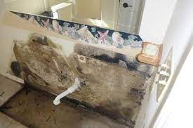 i have mold in my bathroom now what