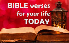 40 Bible Verses To Apply To Your Life Today Impressive Bible Verses Quotes About Life