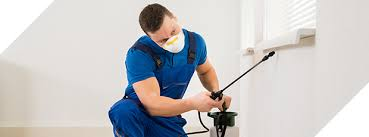 Image result for Termite Treatments Newcastle