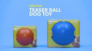 Jollypets_teaserballdogtoy_dog_r0_v1