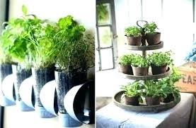 outdoor herb garden kit home depot starter in indoor simple inspiring