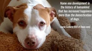 Quotes About Dogs Amazing 48 Inspirational Quotes About Dogs That Will Make Your Day The Dog