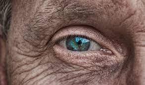 Riforma pensioni, siamo in ritardo: per i pensionamenti 2022 bisogna fare  presto - Pensioni e Fisco