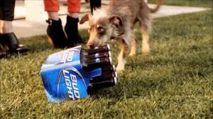 Bud Light Dog Driving Commercial Super Bowl Ad Meter Ranking The Best 100 Commercials Over