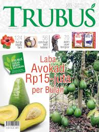 magazines category hobbies interests scoop trubus magazine cover