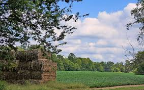 Henrico County Virginia Wikiwand