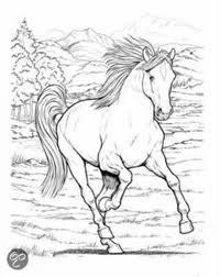 Paardenkleurplaten Kleurplaten Voor Volwassenen