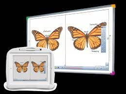 Interactive Whiteboards | Learning Tools | Turning Technologies