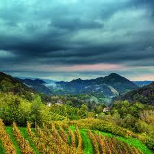Le Colline del Prosecco di Conegliano e Valdobbiadene sono state aggiunte  al Patrimonio Mondiale dell'Umanità dell'UNESCO - Il Post