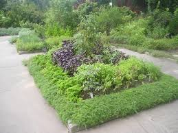 Small Picture Edible Landscape Design HGTV