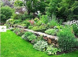 Rock Wall Garden A Blade Of Grass Designs Iphone Wallpaper