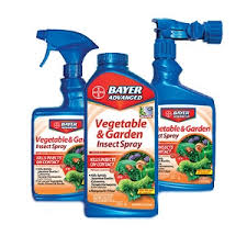 garden insecticide. Vegetable \u0026 Garden Insecticide Concentrate O