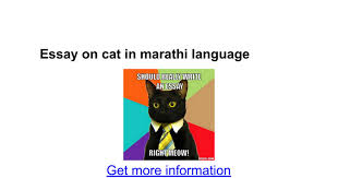 essay on cat in marathi language google docs