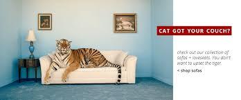 terrific cat got your shop sofas afw american lifestyle furniture