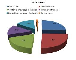 Social Media Pie Chart 2014 Nabchak Author At Nabarunified Blog