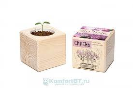 Набор для выращивания <b>растений Экокуб Сирень ECB-01-06</b>