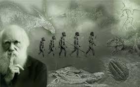 charles darwin s ideologies essay zone the concept of charles darwin s ideologies
