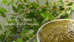 use henna to dye and nourish your hair