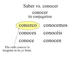 73 Explanatory Saber Conjugation Chart