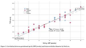 Fetal Cerebellum Measurement Chart Fetal Transcerebellar Diameter In Estimating Gestational Age