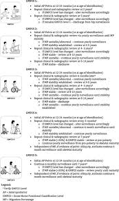 Cerebral Palsy Growth Chart Gmfcs The Role Of Hip Surveillance In Cerebral Palsy Physiopedia