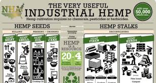Hemp Uses Chart Getting Started In The Industrial Hemp Industry One